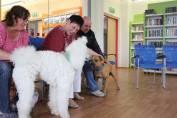 foto - Se zvířátkem do knihovny