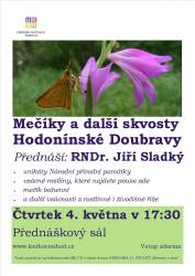 foto - Jiří Sladký - Mečíky a další skvosty Hodonínské Doubravy