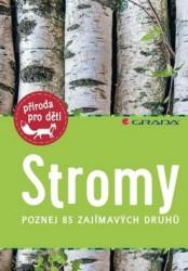 HAAG Holgen Stromy