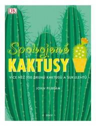 PILBEAM John Spokojené kaktusy
